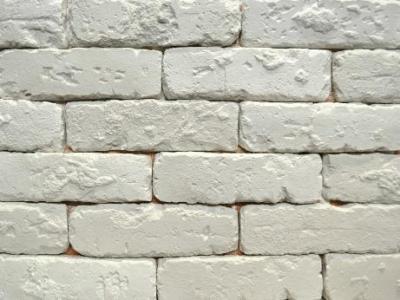 Гипс для стен вместо кирпича